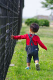 Baby boy walks beside fence Royalty Free Stock Photos