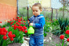 Baby boy watering flowers in colorful spring garden Royalty Free Stock Images