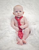 Baby boy wearing tie. Baby boy on fuzzy white blanket wearing a red tie and drooling Stock Photo