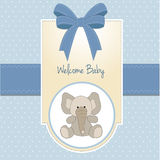 Baby boy welcome card Stock Images