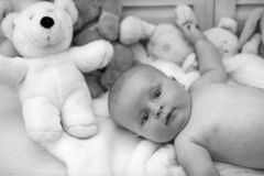 Baby boy and white teddy bear. Childhood and curiosity concept. Baby boy and his white teddy bear. Childhood and curiosity concept. Baby lying on white duvet royalty free stock images