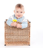 Baby boy in wicker basket with flower on white Stock Photos