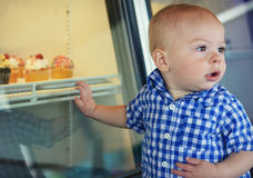 Baby Boy by Window of Cupcakes Stock Photos