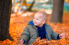 Baby boy in the woods Stock Photos