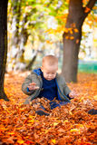Baby boy in the woods Stock Photography