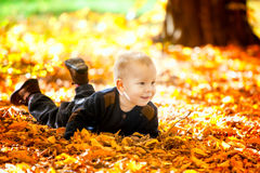 Baby boy in the woods Royalty Free Stock Photo