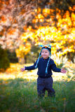 Baby boy in the woods Stock Images