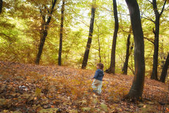Baby boy in the woods Royalty Free Stock Photos