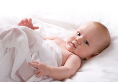 Baby Boy Wrapped in White Sheet Royalty Free Stock Image