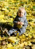 Baby boy with yellow autumn maple leaf. Portrait of toddler child in warm vest jacket outdoors. One year old baby boy with yellow maple leaf in autumn park Royalty Free Stock Images