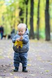 Baby boy with yellow autumn maple leaf. Portrait of toddler child in warm vest jacket outdoors. One year old baby boy with yellow maple leaf in autumn park Stock Photography