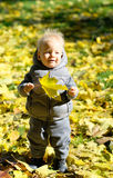 Baby boy with yellow autumn maple leaf. Portrait of toddler child in warm vest jacket outdoors. One year old baby boy with yellow maple leaf in autumn park Royalty Free Stock Photos