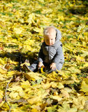 Baby boy with yellow autumn maple leaf. Portrait of toddler child in warm vest jacket outdoors. One year old baby boy with yellow maple leaf in autumn park Royalty Free Stock Photography