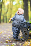 Baby boy with yellow autumn maple leaf. Portrait of toddler child in warm vest jacket outdoors. One year old baby boy with yellow maple leaf in autumn park Royalty Free Stock Photo