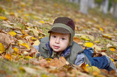 Baby boy among yellow fallen leaves. Cute baby boy among yellow fallen leaves in autumn park Royalty Free Stock Photography