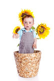 Baby boyl in sunflowers Royalty Free Stock Photography