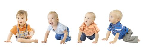 Baby Boys Group, Crawling Infant Kids, Toddler Children Isolated royalty free stock photo