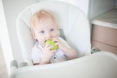 A baby breast eats a green apple stock photography