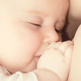 Baby breast feeding Stock Images