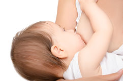 Baby at the breast of mother royalty free stock photo