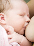 Baby breastfeeding Royalty Free Stock Images