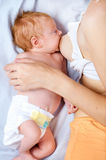 Baby breastfeeding Stock Images