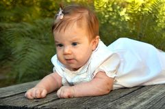Baby on Bridge. Infant lays on a wooden bridge.  She has a light pink bow in her hair and a light pink dress Stock Photos