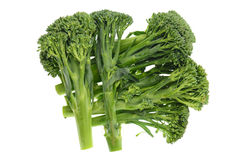Baby Broccoli Shoots Stock Photos