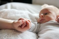 Baby and Brother Lovingly Holding Little Hands stock photos
