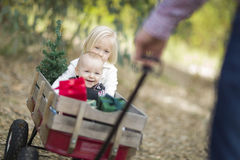Baby Brother and Sister Pulled in Wagon with Christmas Tree Stock Image