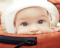 Baby buggy Stock Photo