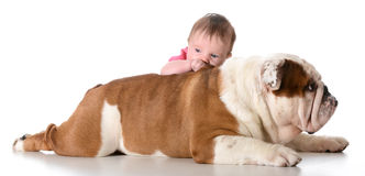Baby with bulldog Royalty Free Stock Image