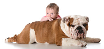 Baby with bulldog Royalty Free Stock Photos