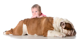 Baby with bulldog Royalty Free Stock Photography