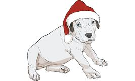 Puppy dog vector Stock Photo