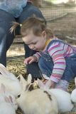 Baby and Bunnies. A little girl feeding bunnies Royalty Free Stock Images