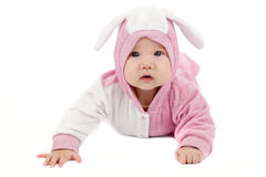 Baby bunny Royalty Free Stock Image