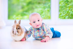Baby and bunny Royalty Free Stock Photo
