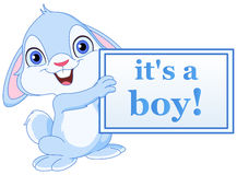 Baby bunny boy. Baby bunny holding its a boy sign royalty free illustration