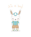 Baby bunny boy Stock Photo