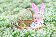 Baby in bunny ears in basket between spring flowers Stock Photos
