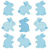 Baby Bunny Rabbits Stock Images