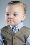 Baby Businessman Stock Image
