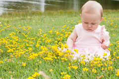 Baby and buttercups Stock Photo
