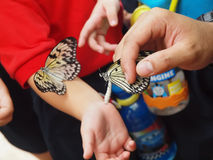 Baby Butterfly on kid's arm Stock Photography