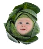 Baby among cabbage leaves Stock Photo