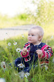 Baby in camomile field Royalty Free Stock Images