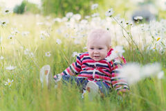 Baby in camomile field Royalty Free Stock Photo