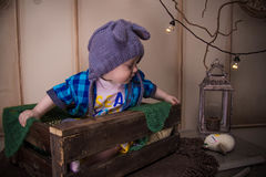 Baby in the cap of the mouse lost an owl among the branches and light bulbs Royalty Free Stock Photos