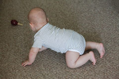 Baby on carpet Stock Photography